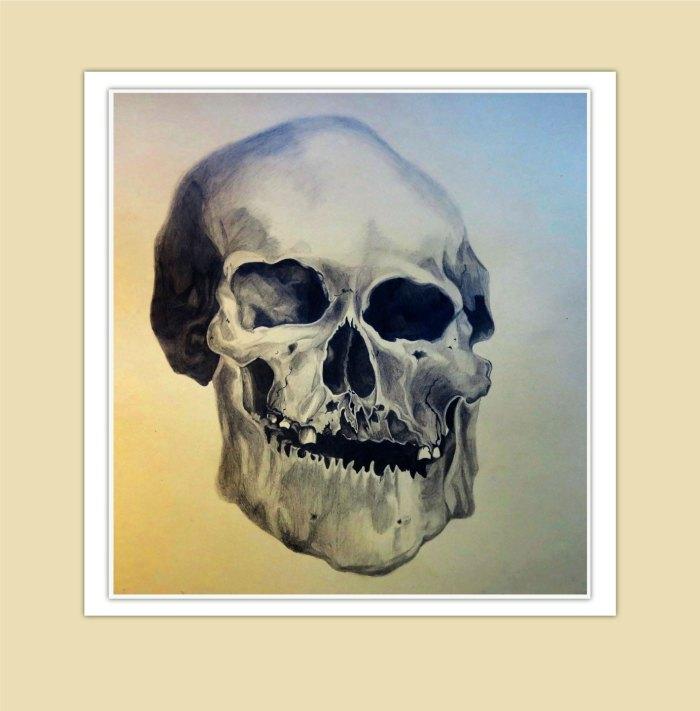 human-skull-1